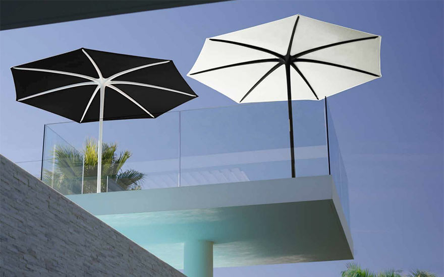 Parasol palma Royal Botania